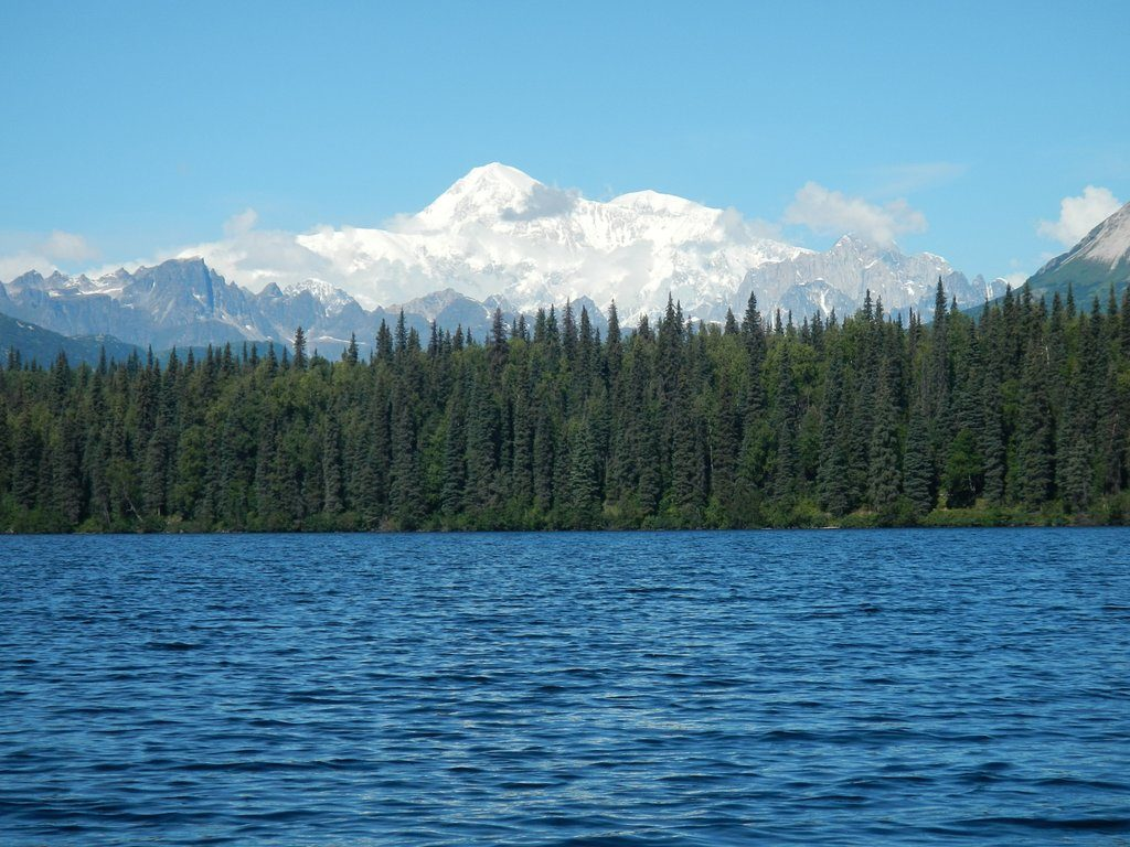 View of Denali from Byers Lake Campground